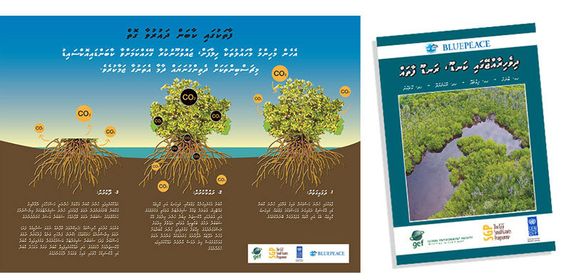 mangrove-poster-booklet2